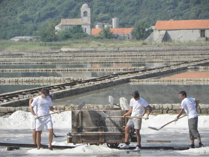 Salzgewinnung in der Saline
